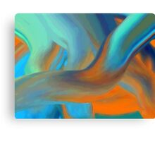 More Colors Canvas Print