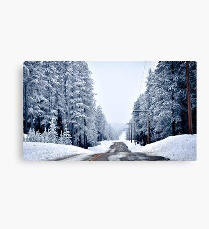 Driving Winter Canvas Print