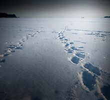 Walking on ice by Rob Smith