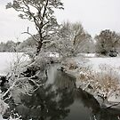 - River Brett in the snow by Christopher Cullen