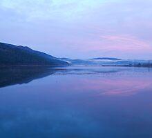 Cerknica lake at dawn, Notranjska, Slovenia by Ian Middleton