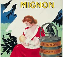 Leonetto Cappiello Affiche Laveuse Mignon by wetdryvac