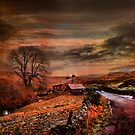 Wainwath Yorkshire Dales. by Irene  Burdell
