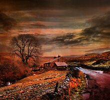 Wainwath Yorkshire Dales. by Irene  Burdell