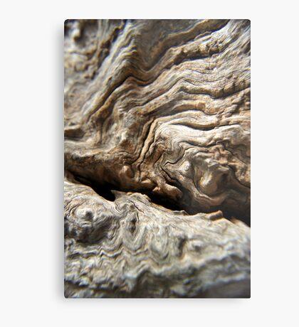 Woody Patterns Metal Print