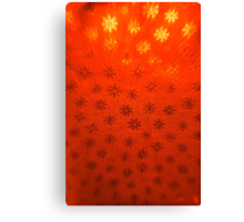 Red Snowflakes Canvas Print