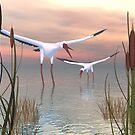 Return Of The Birds by Ineke-2010