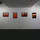 """My exhibition """"Africa alive"""" by Marlies Odehnal"""
