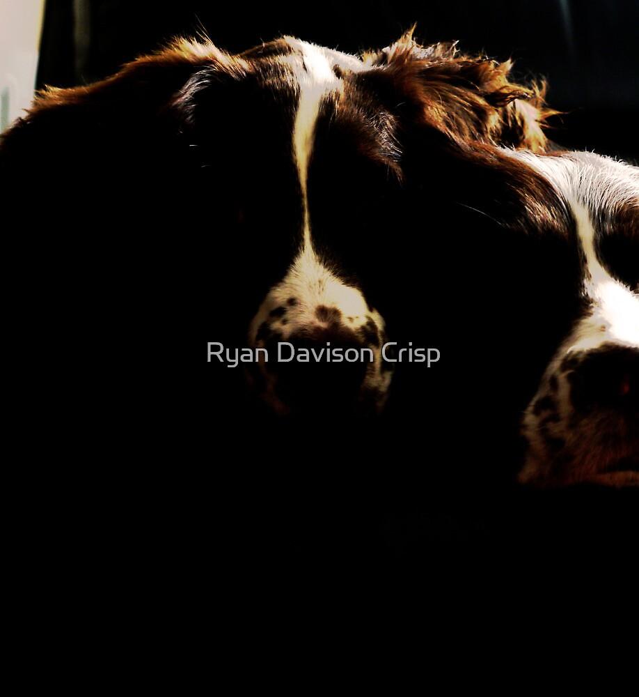 The Outlines of Love by Ryan Davison Crisp