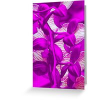 Orchid Collection - 9 Greeting Card