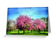 A Park In Bloom Greeting Card