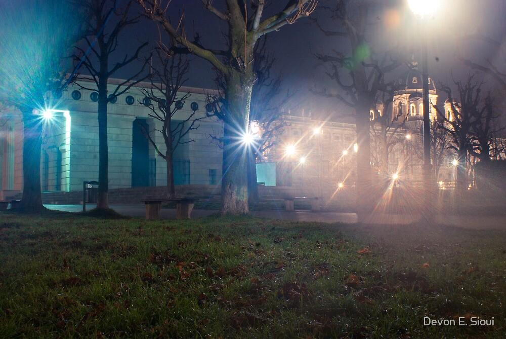Tree Flash by Devon E. Sioui