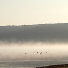Lake Nakuru one early morning in March by Troy Spencer