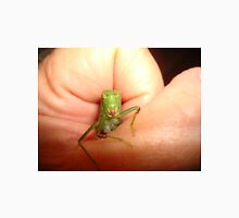 Safe in my hand...a katydid T-Shirt