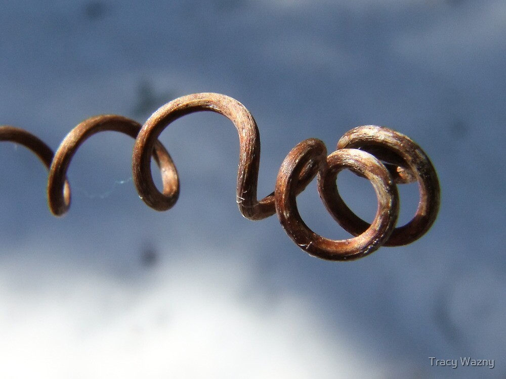 Twist, and Twirl and Spiral by Tracy Faught