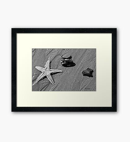 On the Beach #4 Framed Print