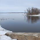 HvsV Horizontal - Ottawa River by BTroy