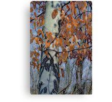 Spirit Tree-Walking through an Ohio forest Canvas Print