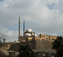 The Cairo Citadel by Chris Vincent