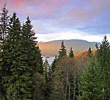 Beautiful British Columbia by Brenda Boisvert