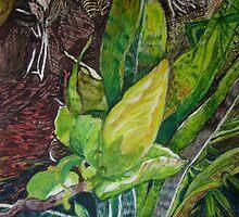 Hibiscus Beginnings, San Patricio, Mexico by Lynda Earley