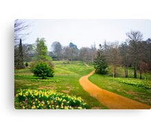 A Host of Golden Daffodils Canvas Print