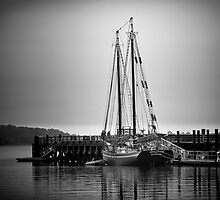 Sailboat at New Haven Pier by ksmdigiphoto