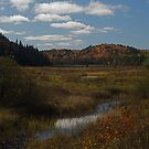 Algonquin High country, Ontario, Canada by creativegenious