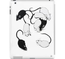 lab salad iPad Case/Skin