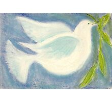 The Dove Returned... Photographic Print