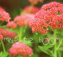 bloom. by queenloube