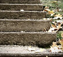 Steps of Autumn by BPhotographer