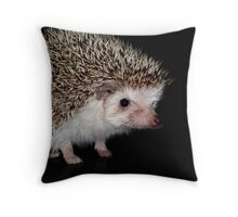 African Pygmy Hedgehog Throw Pillow