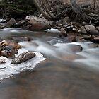 Wild river running by Bree Waltman