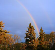 Rainbow On The Northshore  by GaryColvard