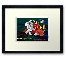 Leonetto Cappiello Affiche Papier Nil Framed Print