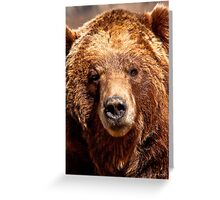 Only You, Can Prevent Forest Fires Greeting Card