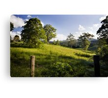 Rolling hills of Bellingen Canvas Print