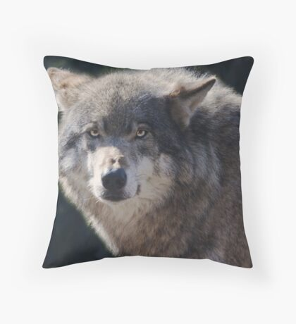 Canis Lupus in Rotterdam Throw Pillow