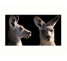 Kangaroo Profile Art Print