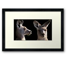 Kangaroo Profile Framed Print