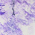 Cedars in Purple by Stan Wojtaszek
