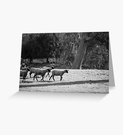 farmscapes #19, the delegation Greeting Card