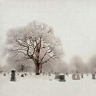 Cemetery in Snow by Mary Ann Reilly