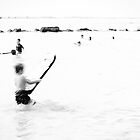 Summer passes in a blur by Tam  Locke