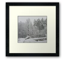 Looking out my Front Door - April 1, 2011 Framed Print