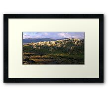 Looking away to the hills Framed Print