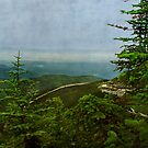 Adirondack View by enchantedImages