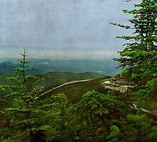 Adirondack View by enchantedImages
