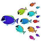 School of colorful fish  by Nasko .